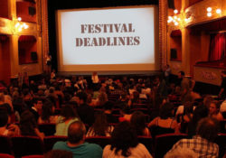 animation festival deadlines
